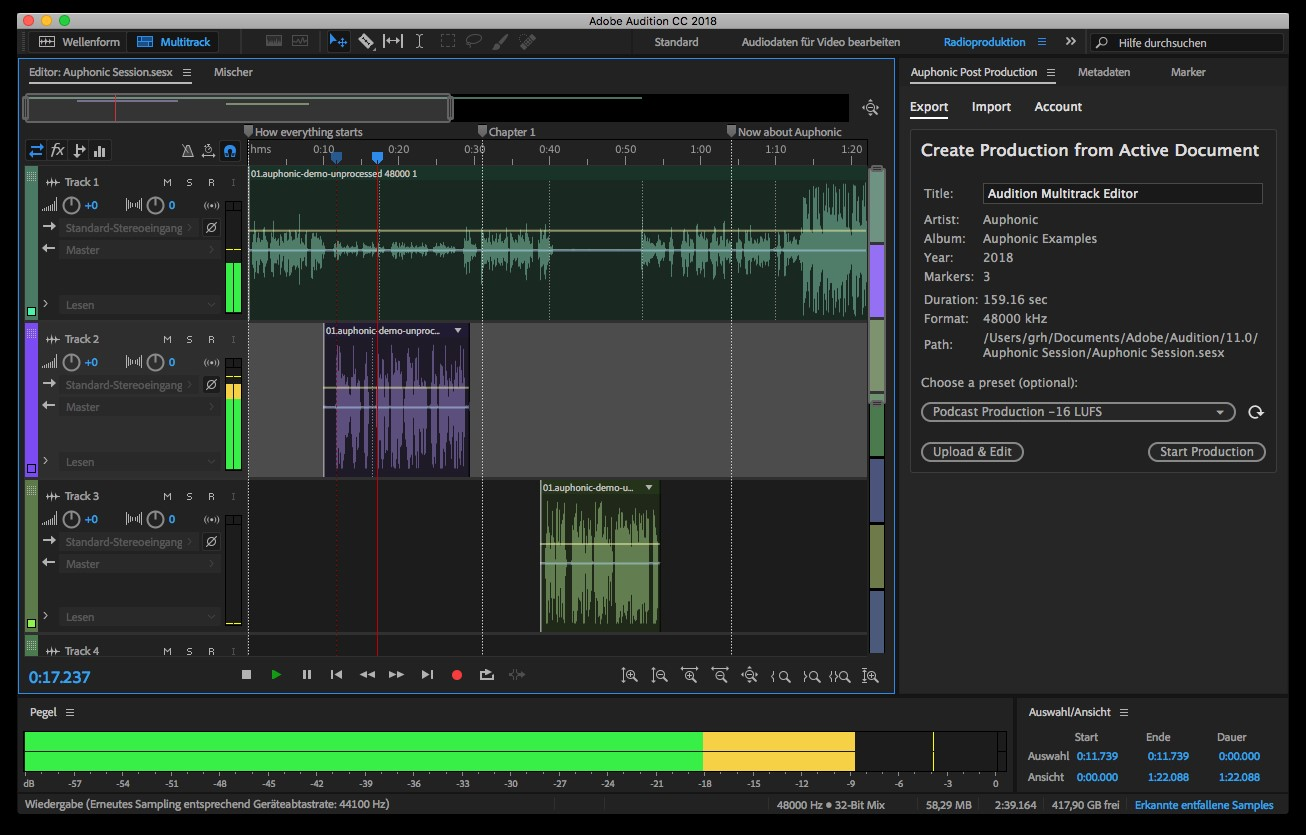 View of computer screen running Adobe Audition software.
